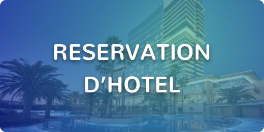 Agence voyage reservation hotel tunis maroc istanbul barcelone paris
